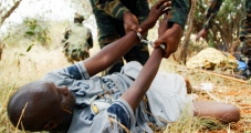 <h5>The War On Elephant Poachers</h5><p>An elephant poacher being arrested by African authorities.</p>