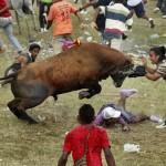Spectators Gored To Death In Bullfight