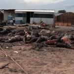 Hundreds of Civilians Massacred In South Sudan