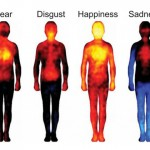 Mapping human emotions