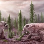 Ancient Ecosystem Response To Mass Extinction
