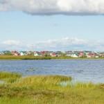 Climate change helps Alaskan grow organic food on the tundra
