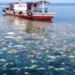 Plastic trash transforms the Pacific