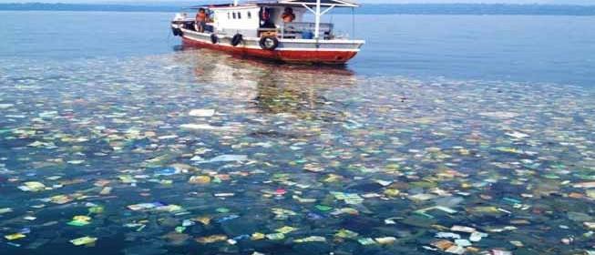Plastic Bottles Trash
