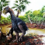 Giant flightless bird wandered the Arctic 50 million years ago