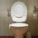 Indian state requires candidates to own a toilet before they can run in village elections