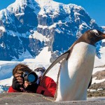Are you an artist or writer who wants to live in Antarctica?