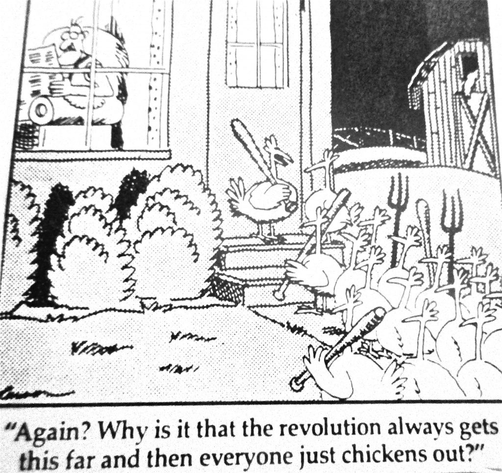 Cartoon Again Why Is It That The Revoulation Always Get This Far And Than Everyone Just Chiken Out