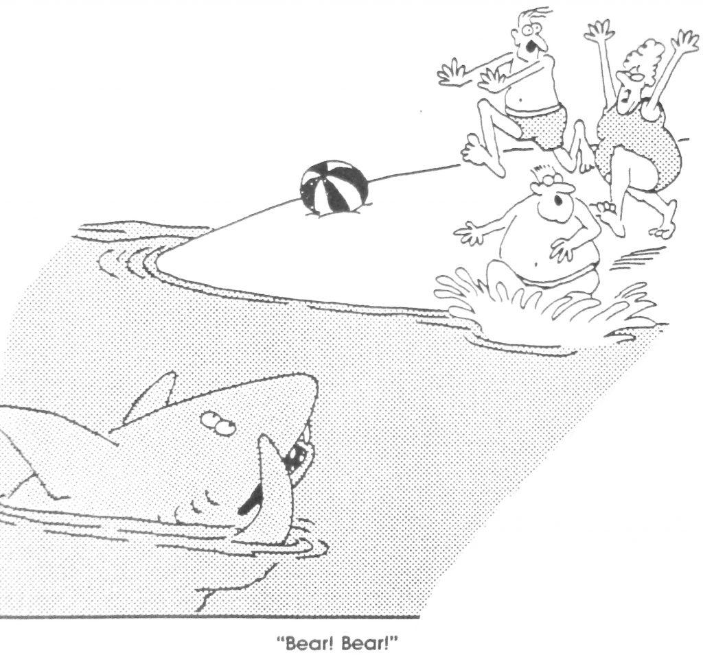 Cartoon Bear Bear