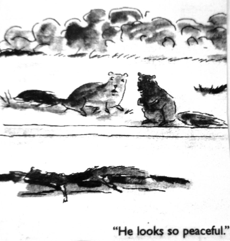 Cartoon He Looks So Peaceful
