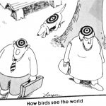 Cartoon – How Birds See The World