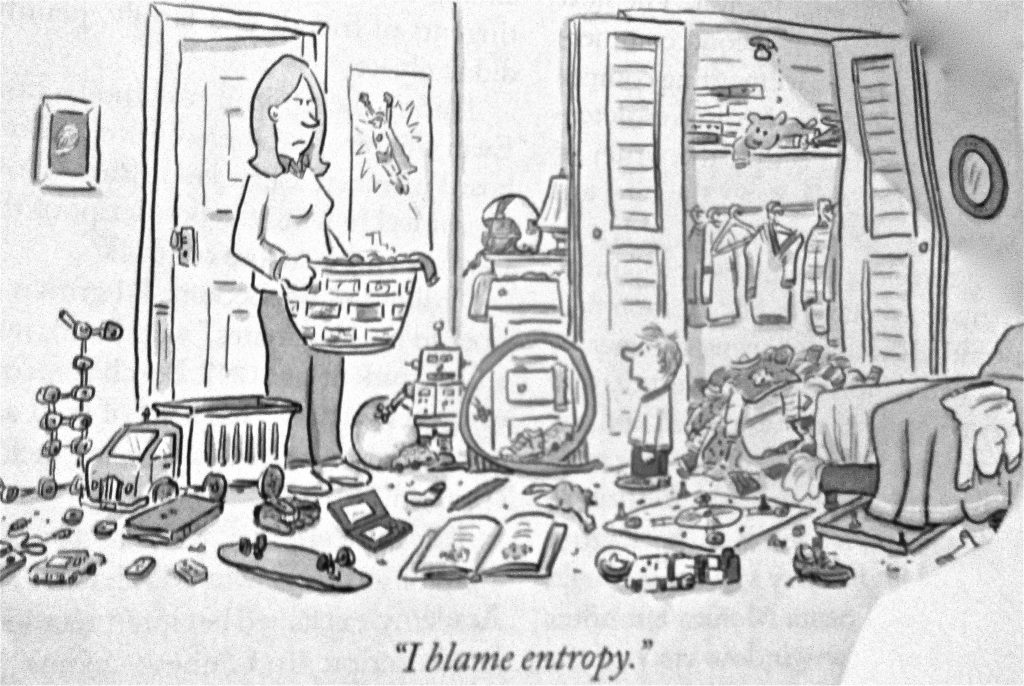 Cartoon I Blame Entropy