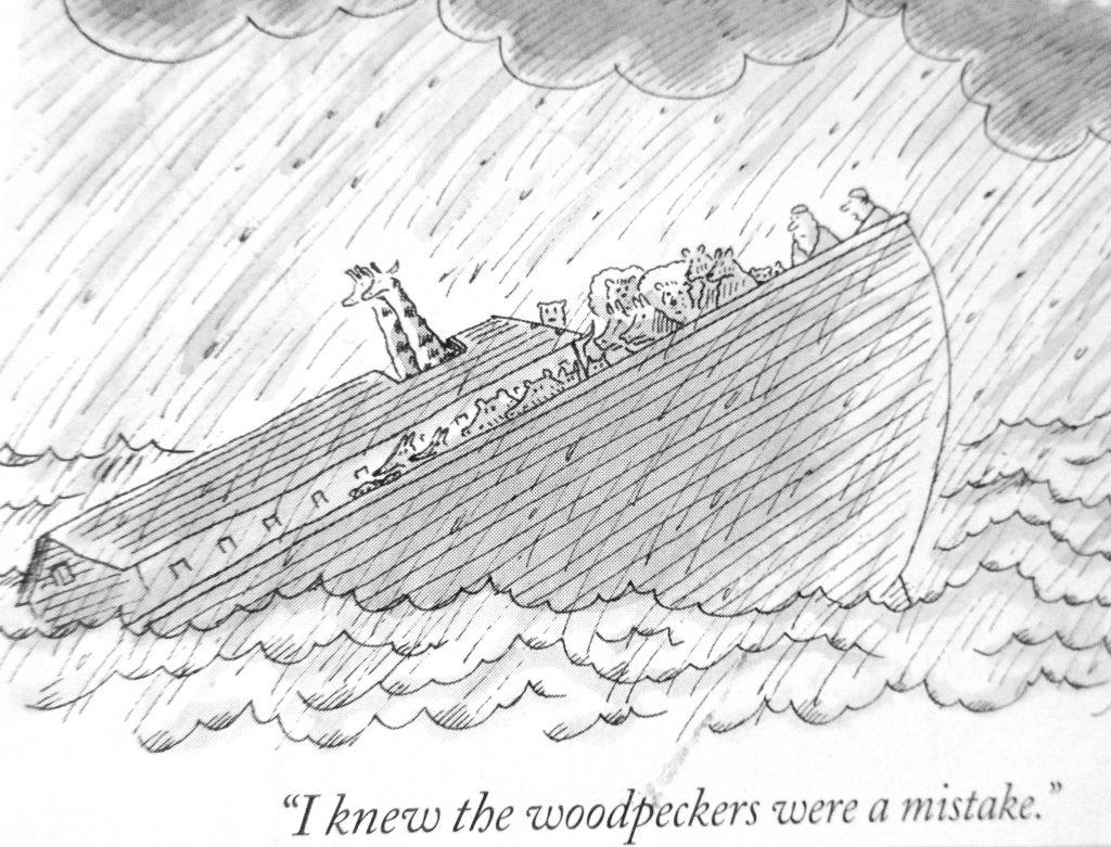 Cartoon I Know The Wood Peckers Were A Mistake