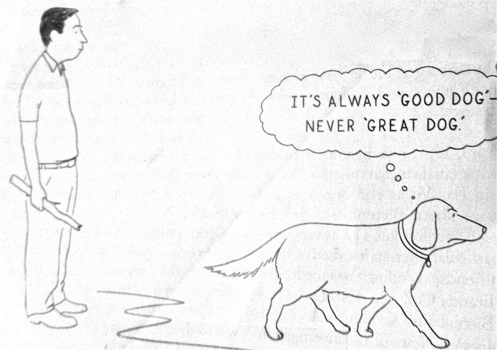 Cartoon It Always Good Dog Never Great Dog