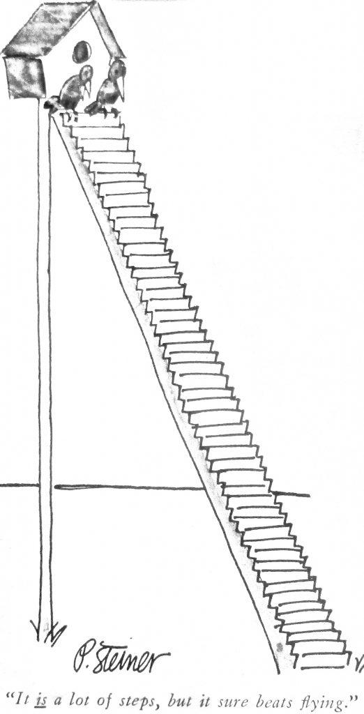 Cartoon It Is Alot Of Steps But It Shoure Beats Flying