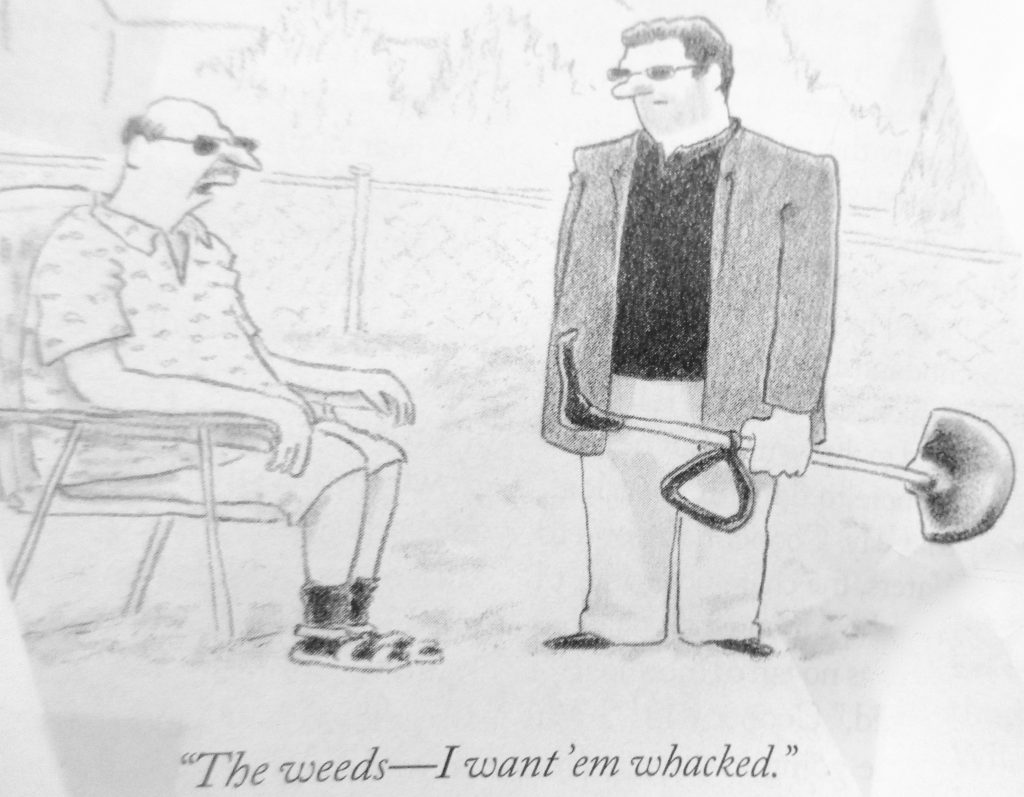 Cartoon Mafia Landscapers