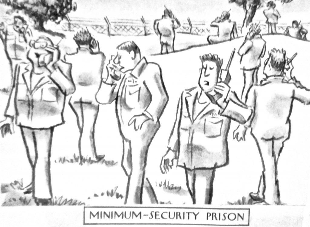 Cartoon Minmum Security Prison