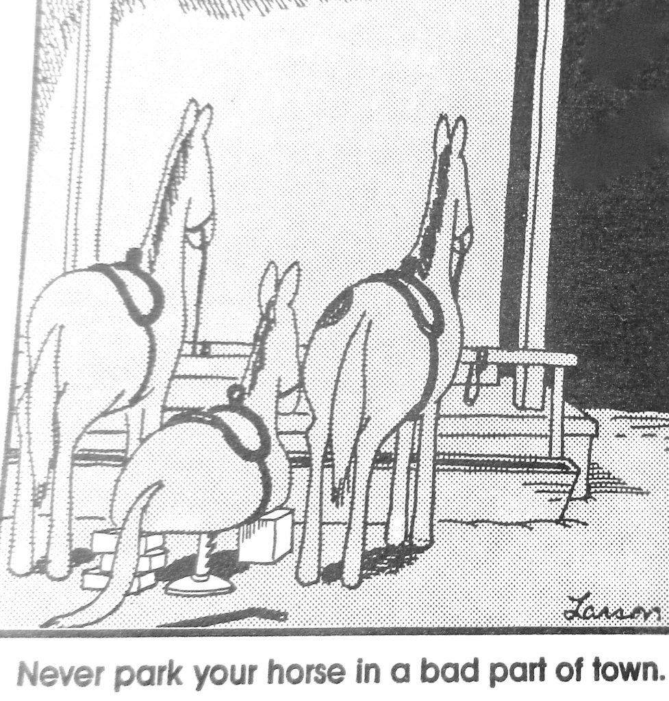 Cartoon Never Park Your Horse In A Bad Part Of town