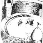 Cartoon – Royal Issues