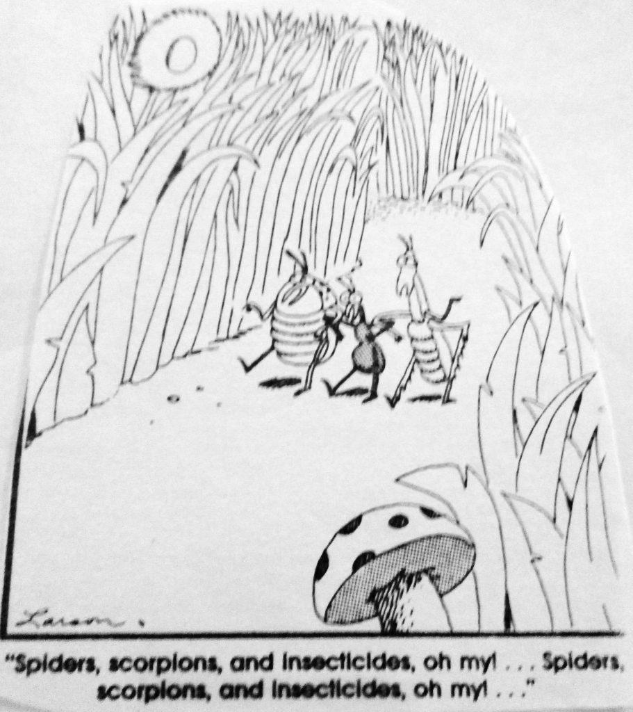 Cartoon The Wizard of Bugs