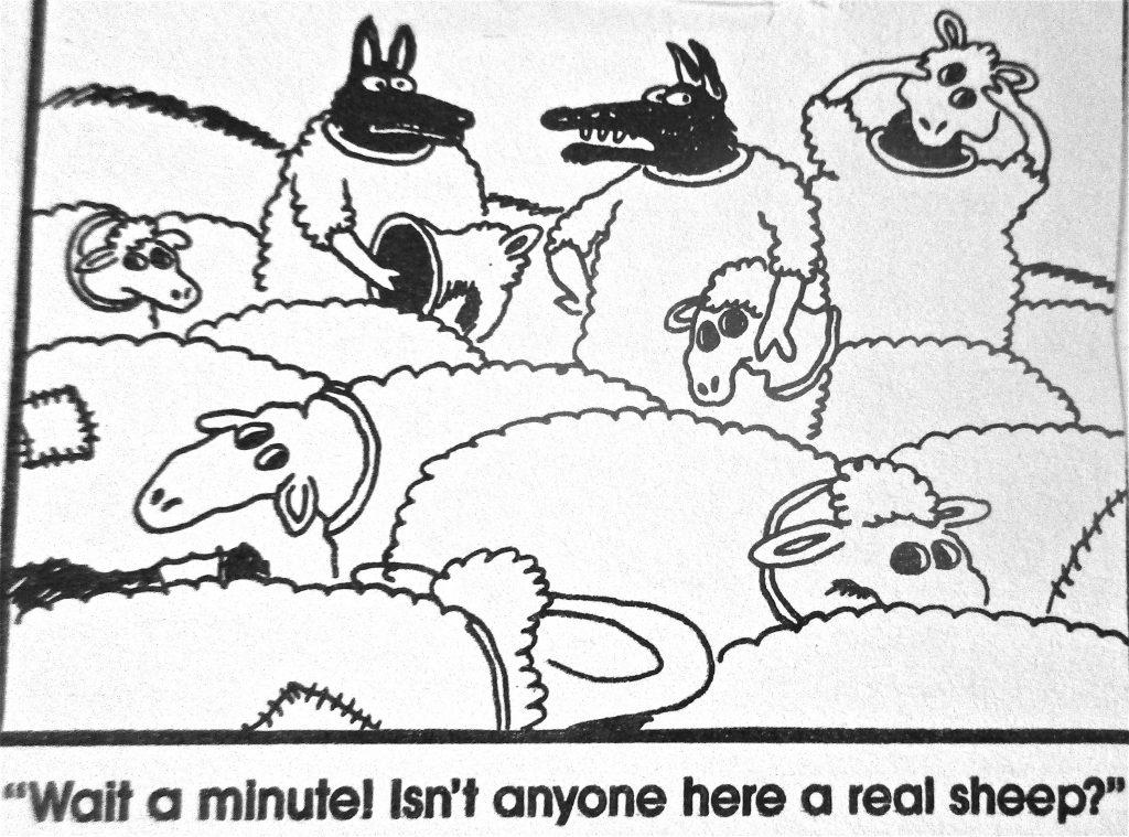 Cartoon Wait A Minutel Isnt Anyone Here A Real Sheep