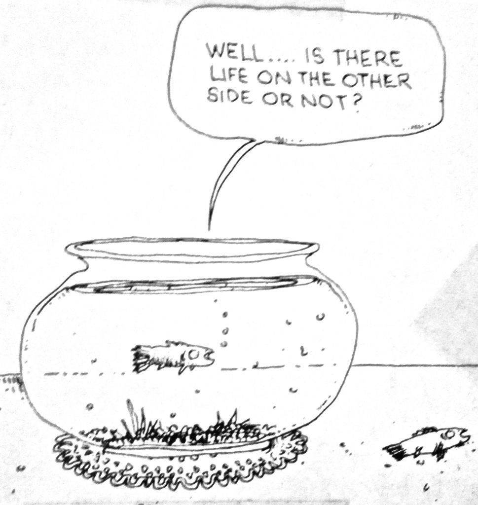 Cartoon Wel