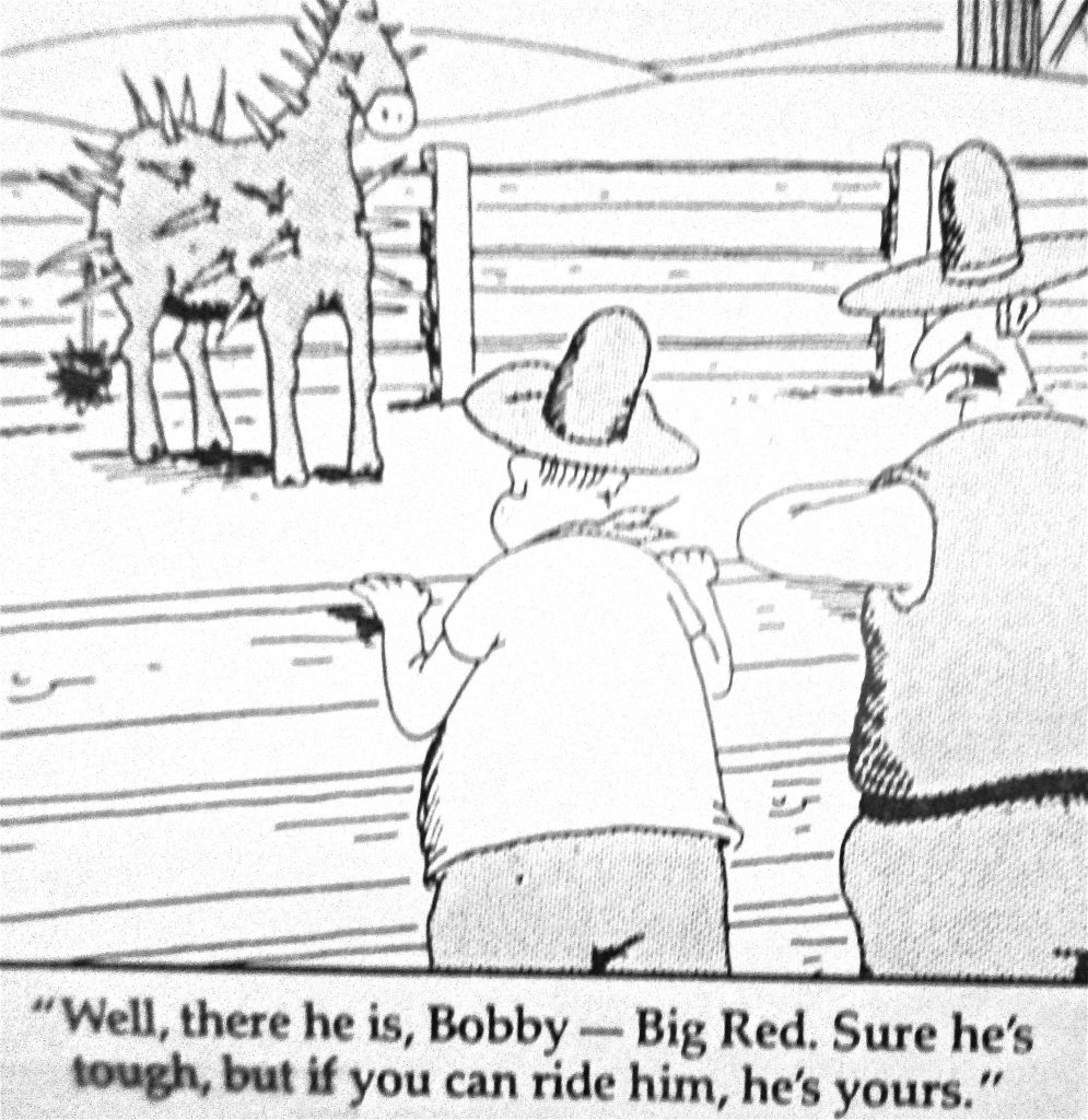 Cartoon Welll There He Is Bobby Big Bad Sure Hes Tough But If You Can Ride Him Hes Yours
