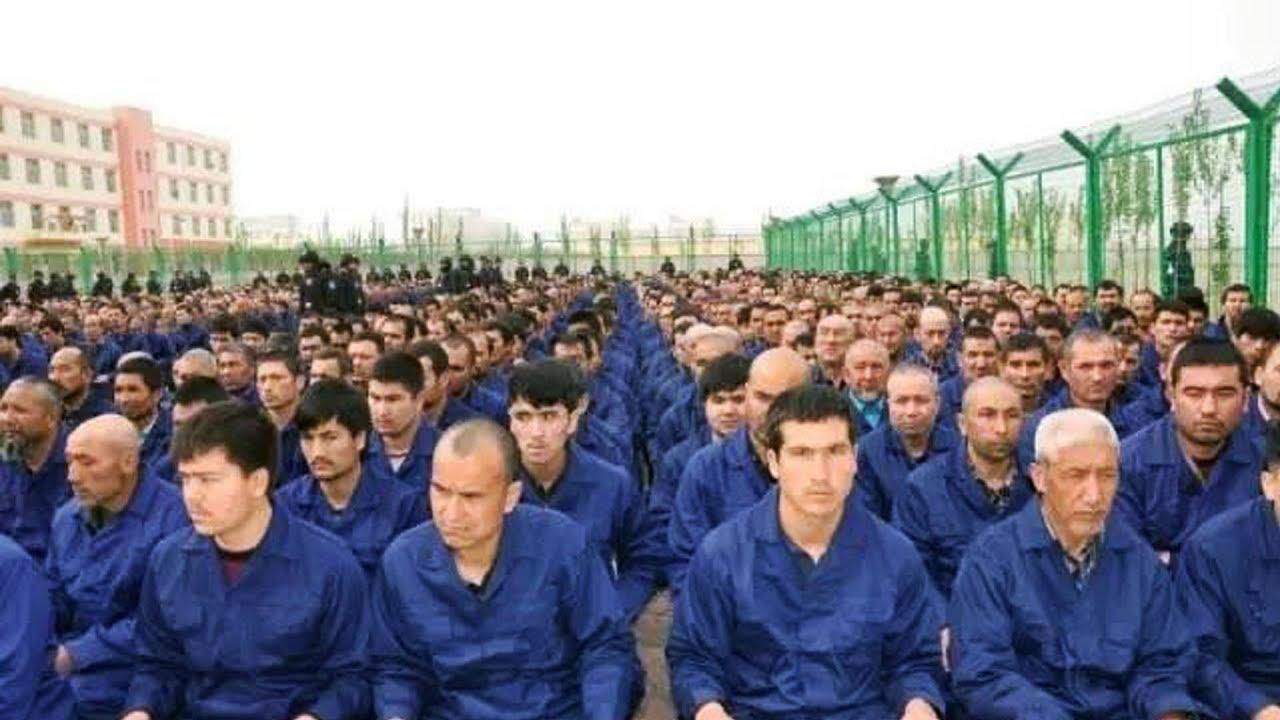 torture camps in xinjiang  china