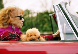 Do People With Pets Live Longer