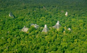 MAYAN STRUCTURES FOUND IN GUATEMALA