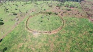 Amazon Settlements Discovered in Rainforest