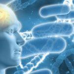 Do Infections Prevent or Treat Alzheimer's?