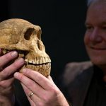 Homo Naledi – Distant Relative?