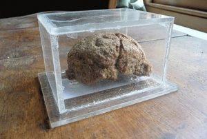 World's Oldest Bread