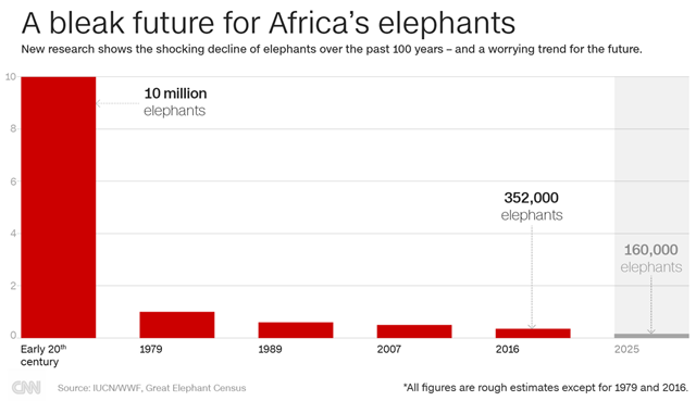 African Elephants Declining in Numbers Census
