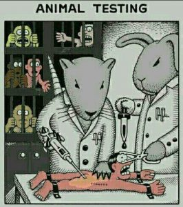 Cartoon - Animal Testing